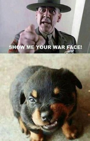 Show me your war face - Military humor
