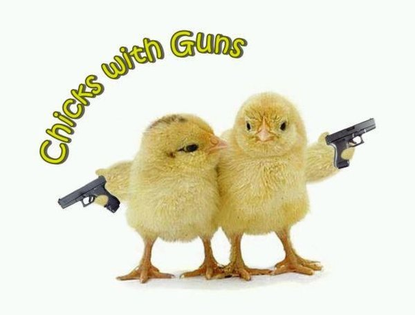 Chicks With Guns - Military humor