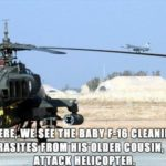 Here, We See The Baby F-16 Cleaning Parasites