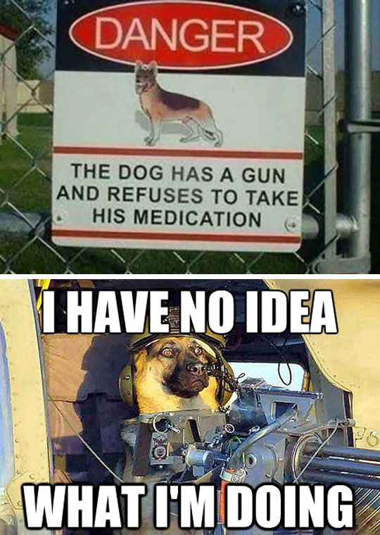 Ultimate Beware Of The Dog Sign - Military humor