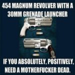 454 Magnum With A 30mm Grenade Launcher