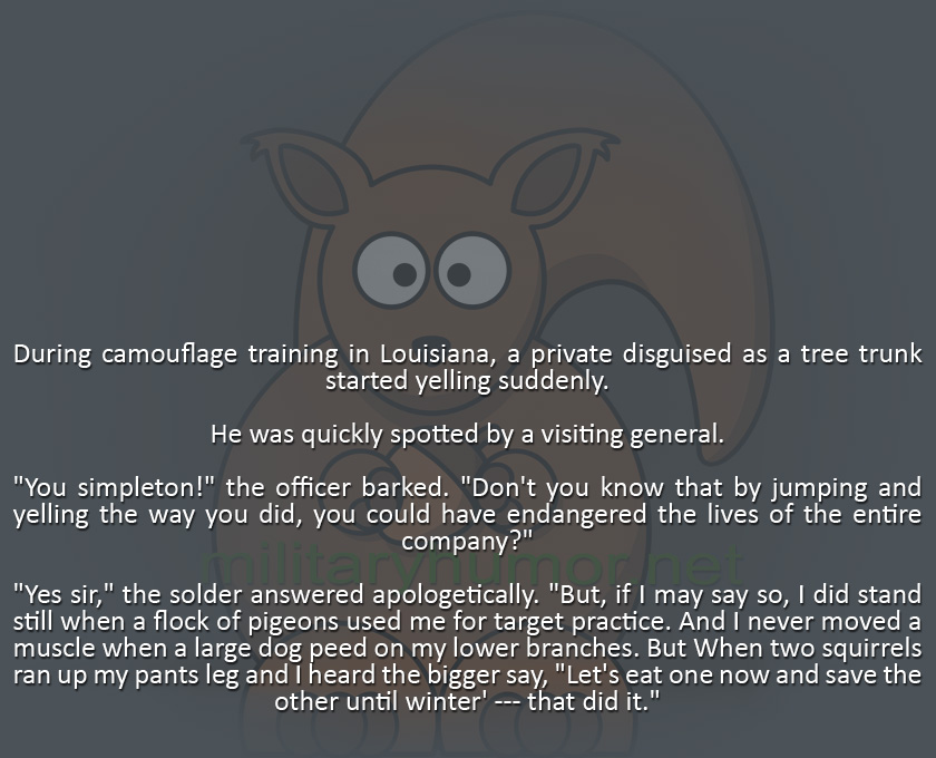 Camouflage Practice - Military humor