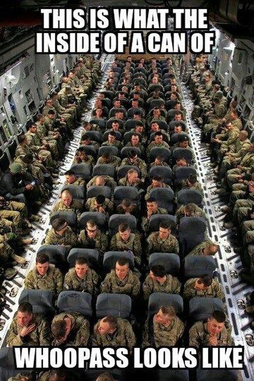 A Rare View - Military humor
