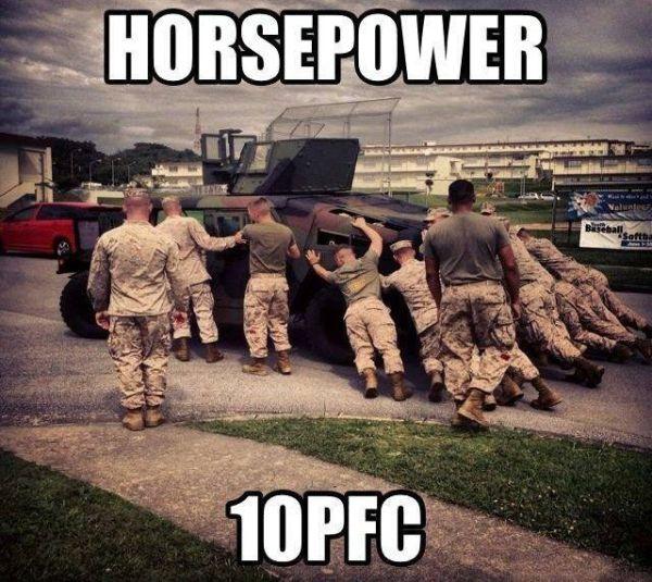 Horsepower - Military humor