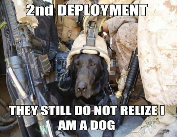 2nd Deployment - Military humor