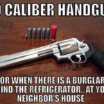 .50 Caliber Handgun
