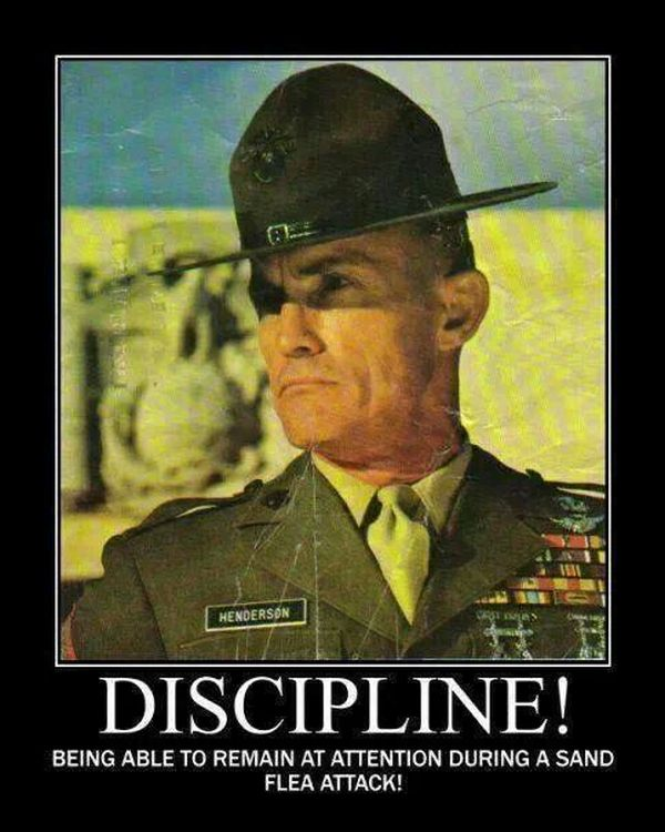 Discipline | Military Humor