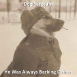 Dog Sergeant