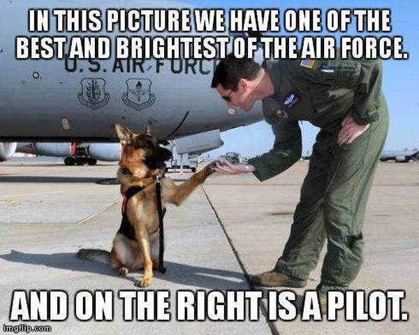 One Of The Best And Brightest Of The Air Force - Military humor