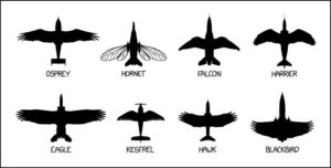Latest Aircraft Identification Chart - Military humor