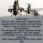 Combat Pilots